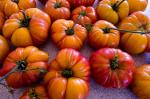 Homegrown organic tomatoes. Picture: Andrew Storms